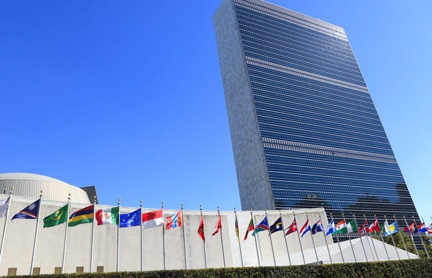 Birleşmiş Milletler COVID-19 ile mücadeleye tüm birimleriyle devam ediyor.